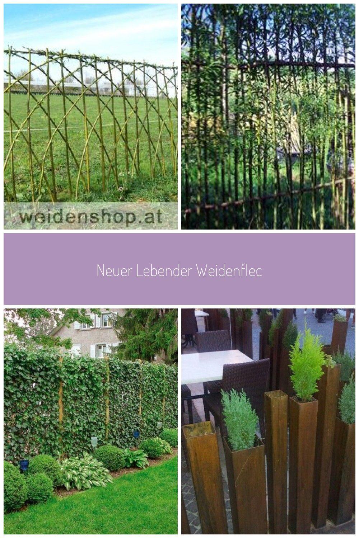 Neuer Lebender Weidenflechtzaun Aus Korbweide Salix Viminalis