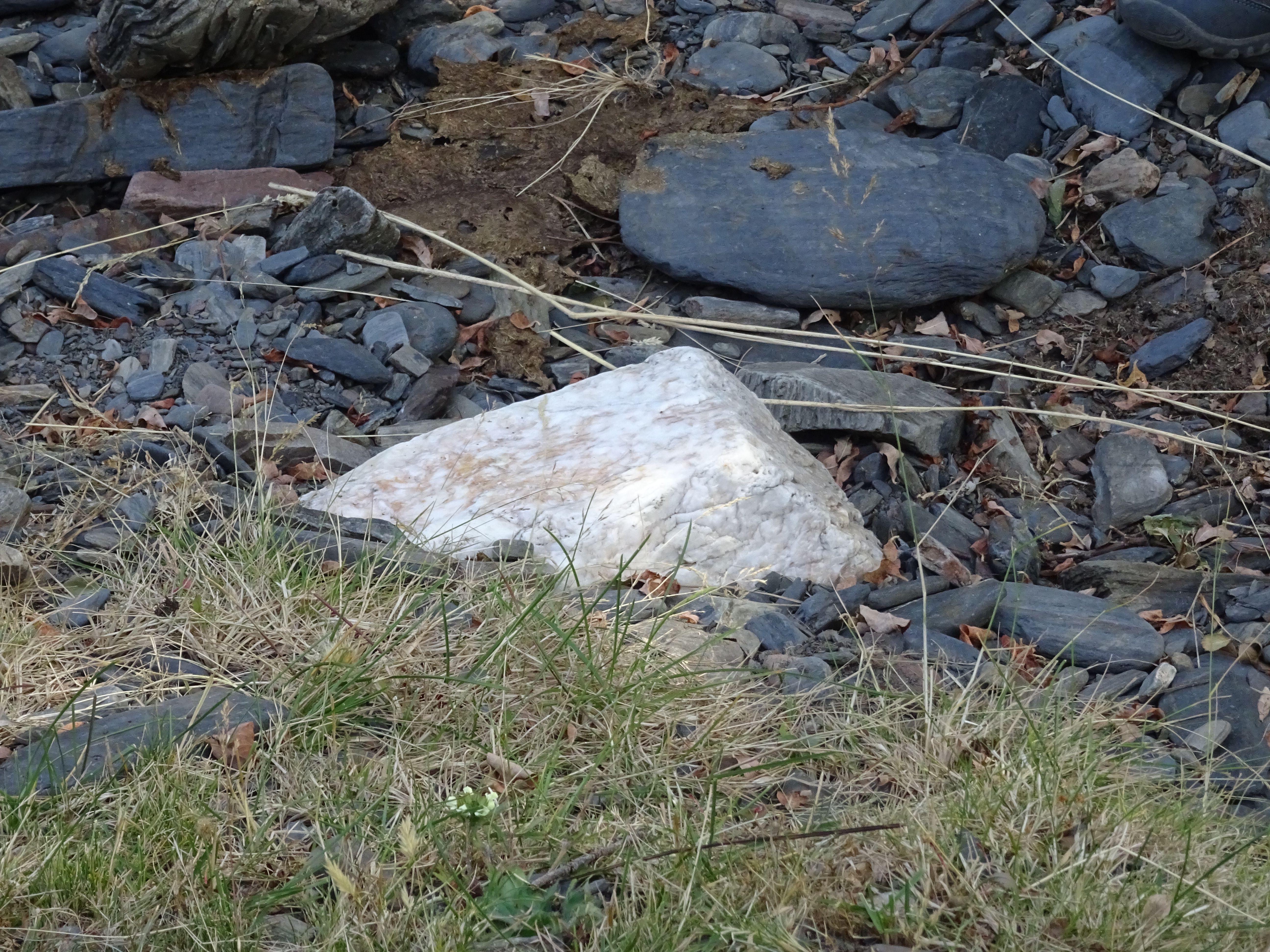 Vemos en primer plano una piedra cuarcita, blanca, que destaca entre las pizarras oscuras, grises. Las pizarras están redondeadas por la erosión producida por el río.