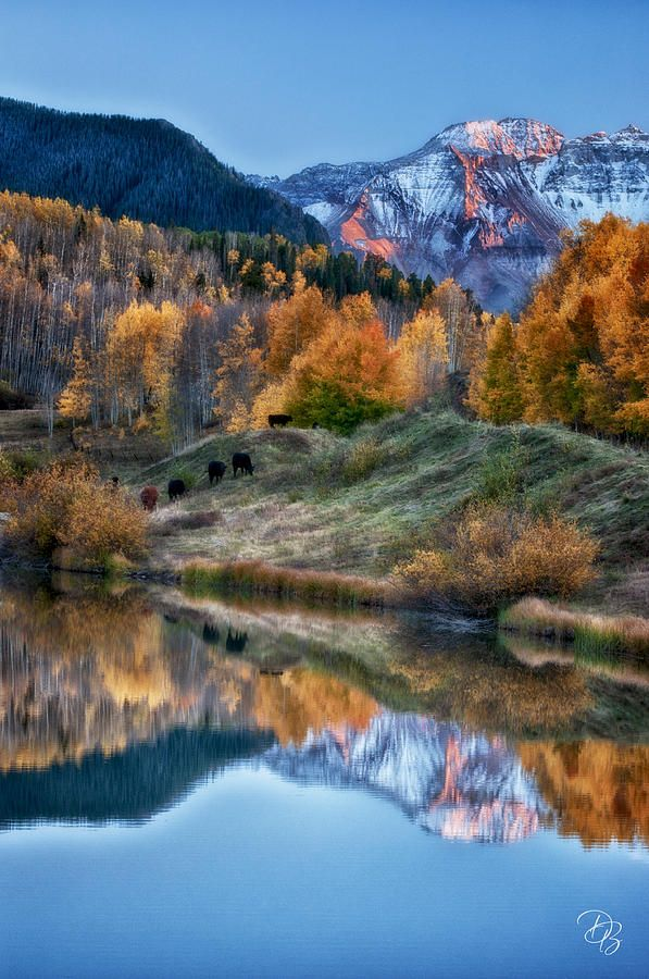 Late Day Reflections - Colorado