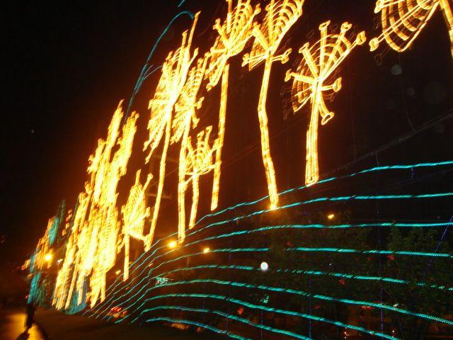 Navidad Medellín 2008. Alumbrado Navideño Medellín. Navidad