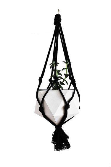 Plant #hanger