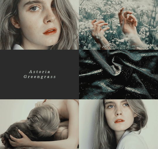 Draco Married The Younger Sister Of A Fellow Slytherin Astoria Greengrass Who Had Gone Through A Si Astoria Malfoy Harry Potter Fantastic Beasts Harry Potter