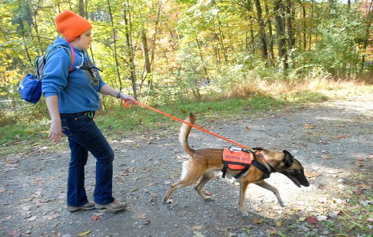 NEW COLUMBIA — Members of a K9 search and rescue squad