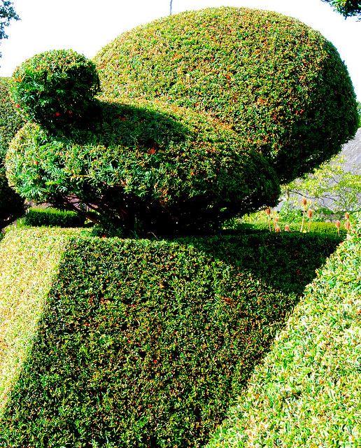 Modern Italian Garden Design: Giving Topiary The Bird At Great Dixter!