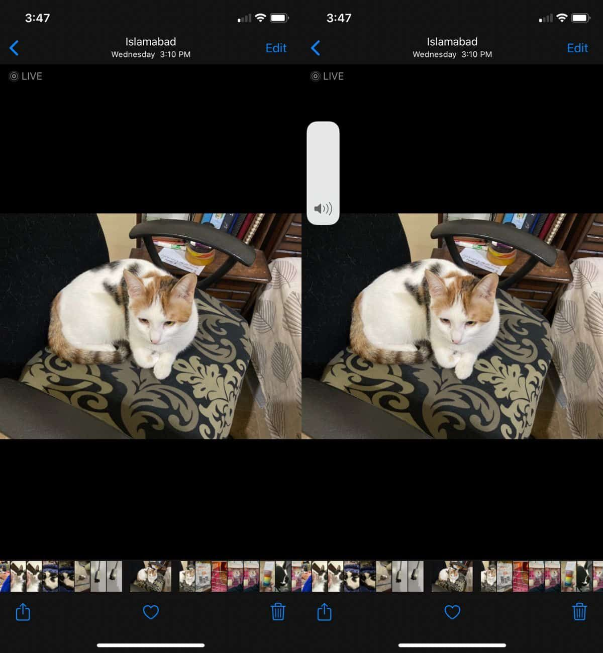 How To Hear The Sound Recorded With A Live Photo On Ios Live Photo Photo Apps Photo