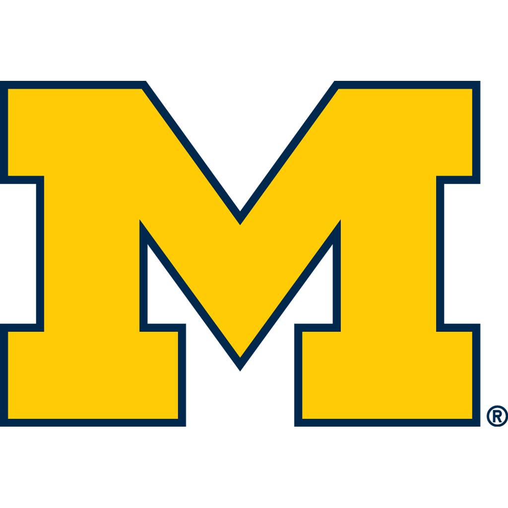 University of Michigan Vinyl Stickers ////Any-Size////Football Michigan Wolverines Vinyl deacl for Car Bumper Truck Laptop Window Team Logo NCAA