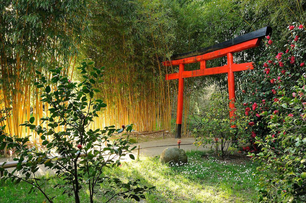 La Bambouseraie, porte d\'entrée du Vallon du dragon, jardin ...