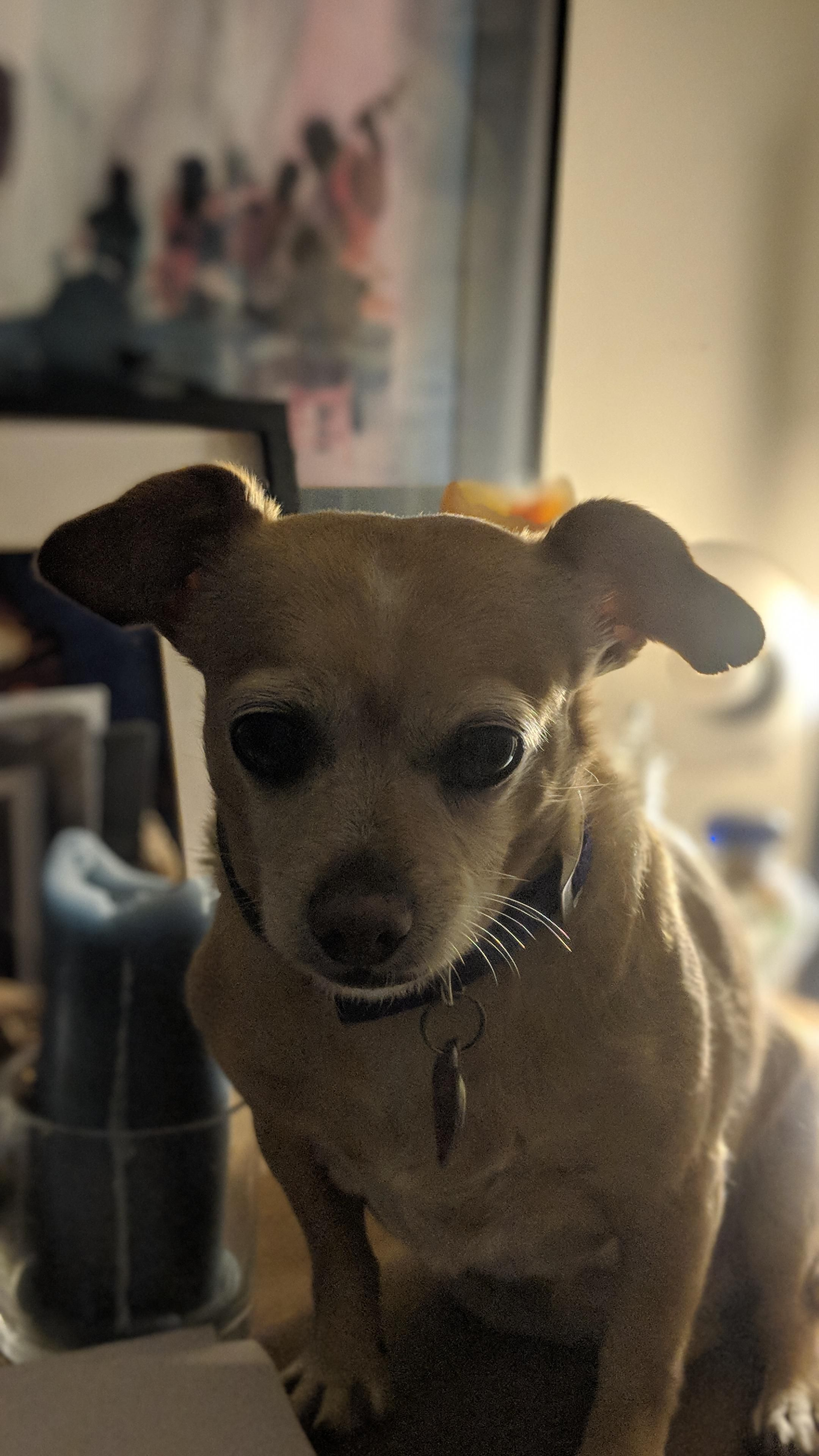 Reddit this is susan my adopted year old sister ift