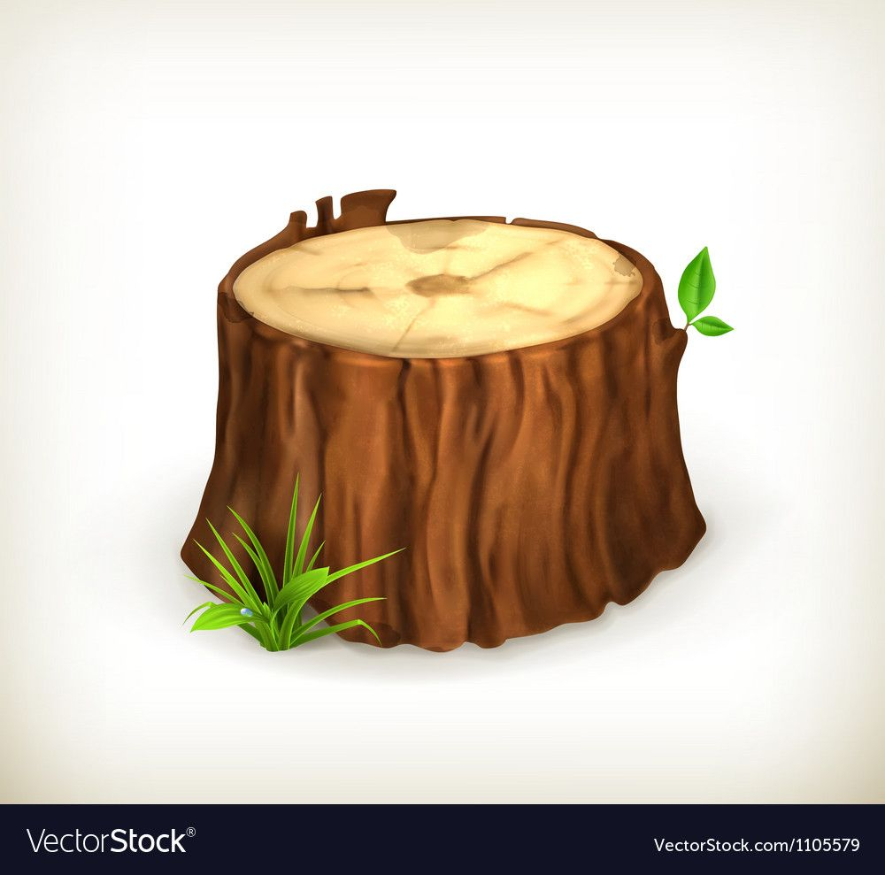 Tree Stump Vector Download A Free Preview Or High Quality Adobe Illustrator Ai Eps Pdf And High Resolution Jpeg Versio Tree Stump Tree Drawing Fruit Sketch