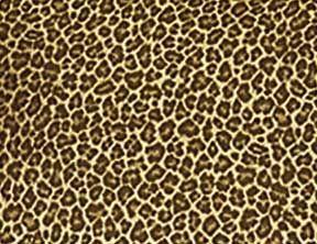 cheetah print.