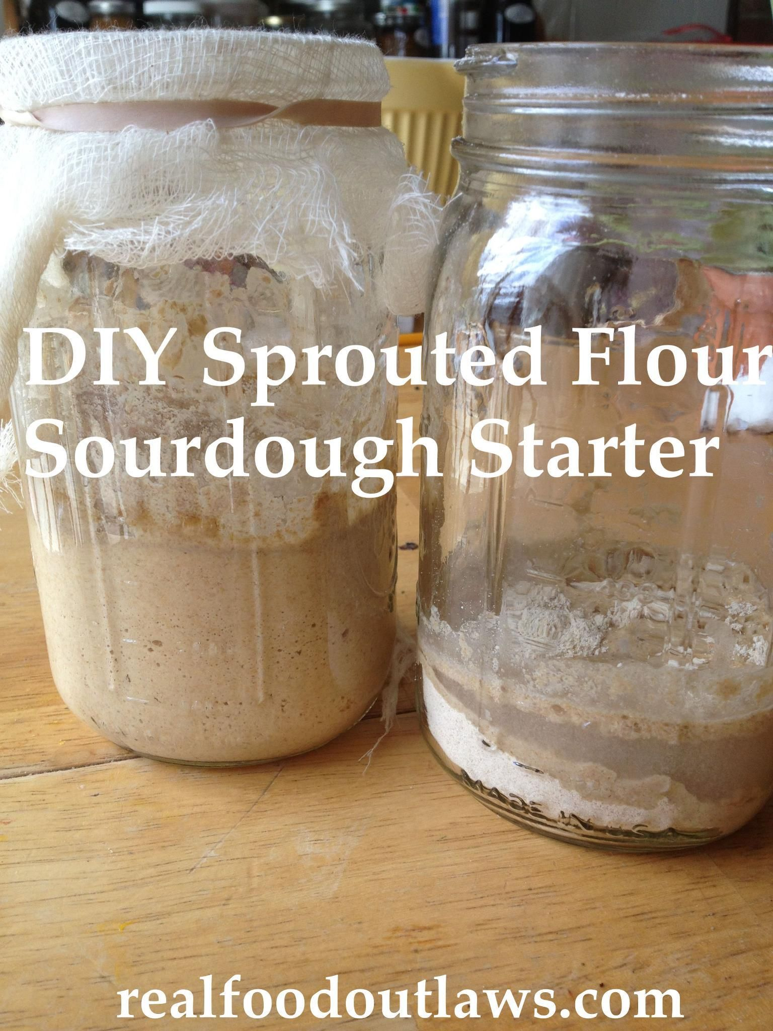 DIY Sprouted Flour Sourdough Starter THM Breads Pinterest
