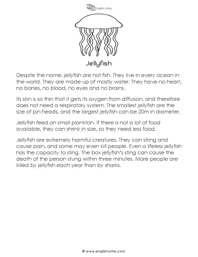 Workbooks shark worksheets for kids : Image for short story jellyfish | Ocean Animals | Pinterest ...
