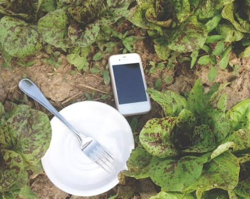Five FarmtoTable Apps For Your Real Food Journey And Most Of Them - Farm to table app