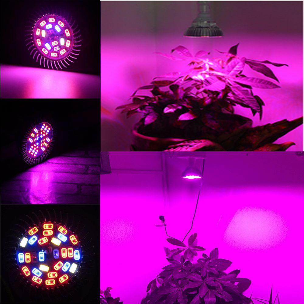 Full Spectrum Led Grow Light Led Growing Lamp For Flower Plant Hydroponics  System Aquarium Led Lighting