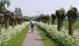 Zicht op de Vechtstreek: ontdekt fietsend, wandelend of varend het schitterende landschap van de Vechtstreek. Thematische routes over buitenplaatsen, jaagpaden, molens en forten.