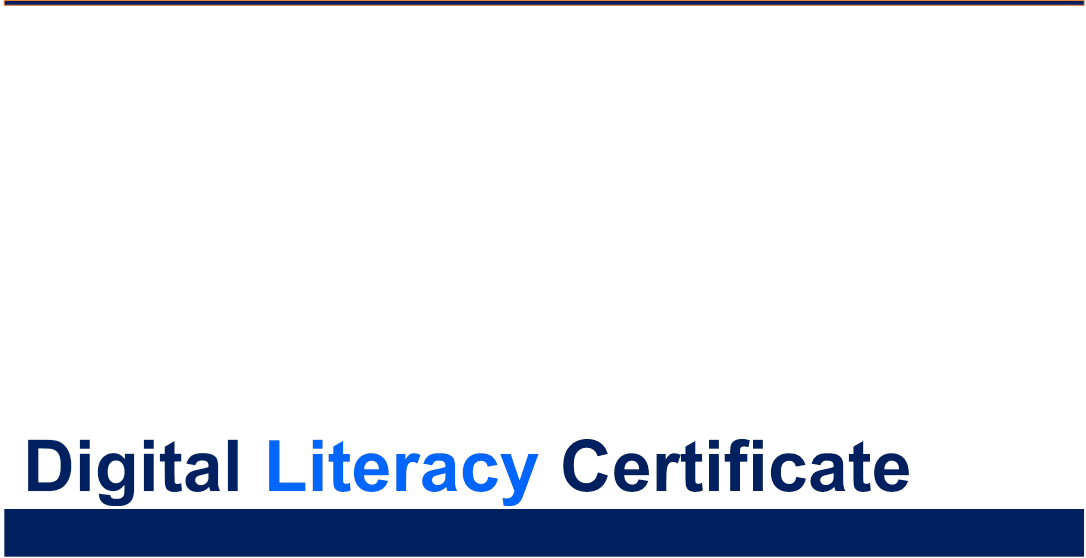 Microsoft Digital Literacy Certificate French Grammar