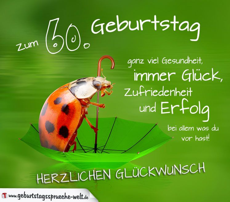 Kurzer Lustiger Spruch Zum 50 Geburtstag Einer Frau