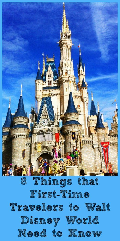 8 Things That First Time Visitors To Walt Disney World