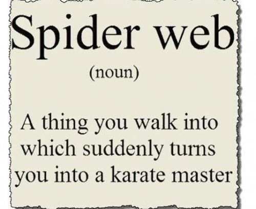 Yes, I know these things...except I dance and do karate at the same time...good times.