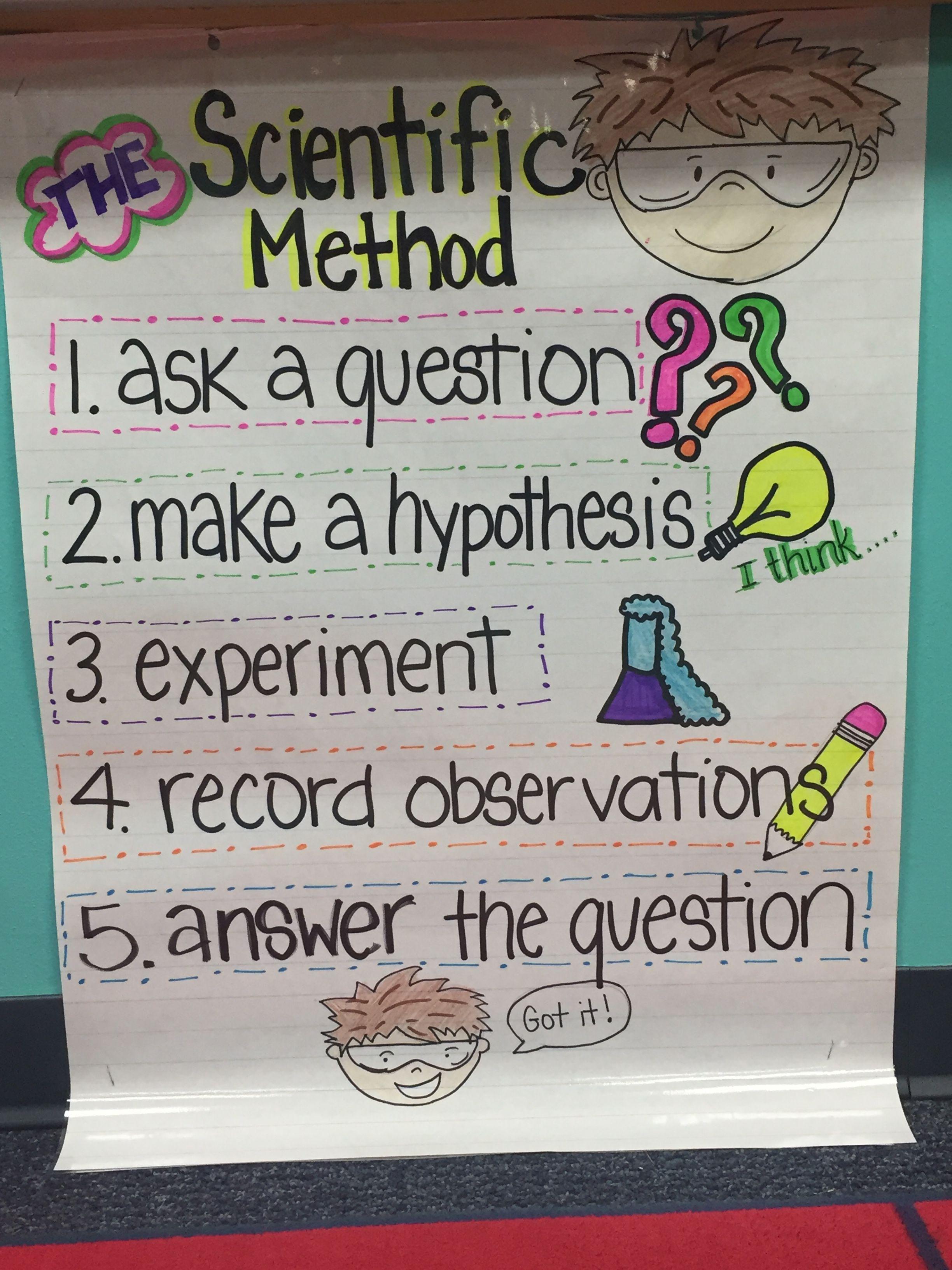 Ankerkarte Der Wissenschaftlichen Methode 1 Klasse