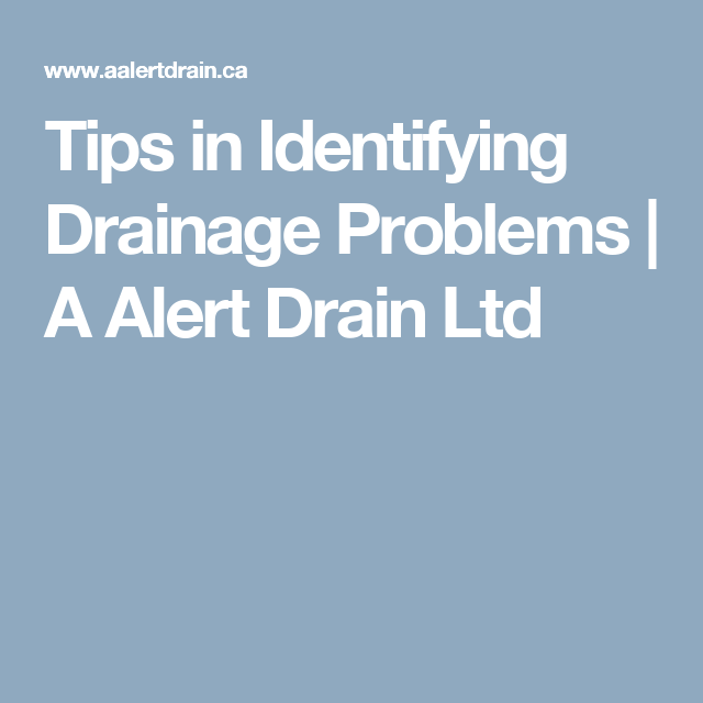 Tips in Identifying Drainage Problems | A Alert Drain Ltd