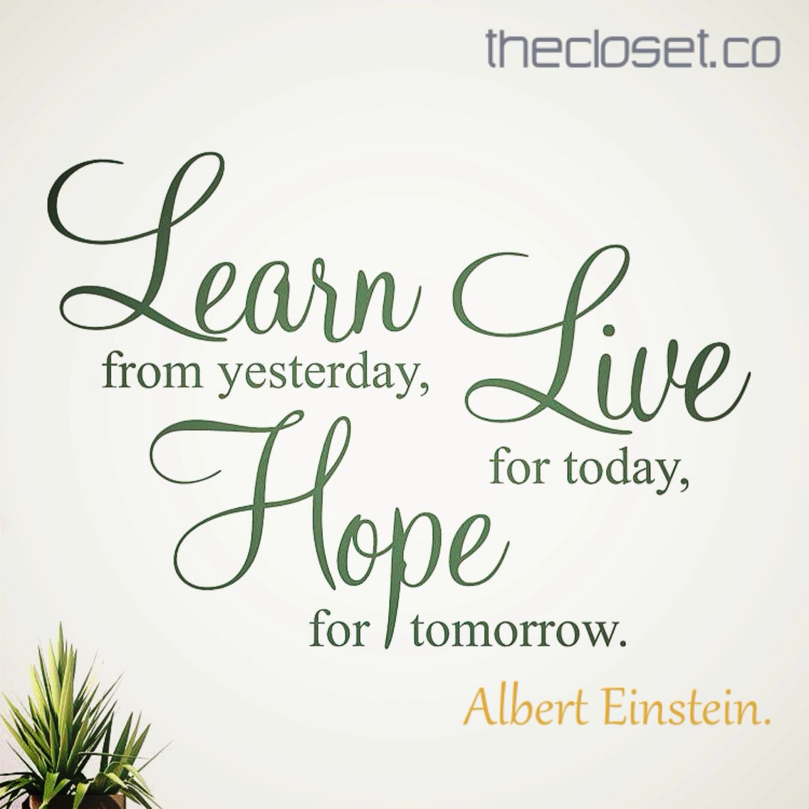 Live For Today Quotes Learn From Yesterday Live For Today And Hope For Tomorrow Albert