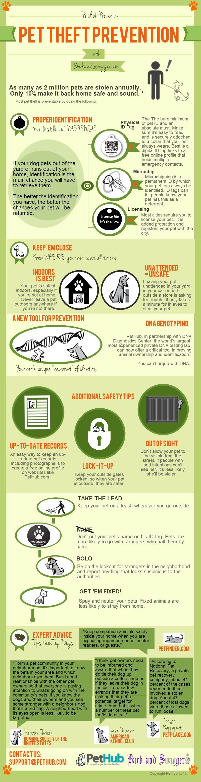 Pet Theft Prevention Tips Pets, Pet care tips, Dog safety