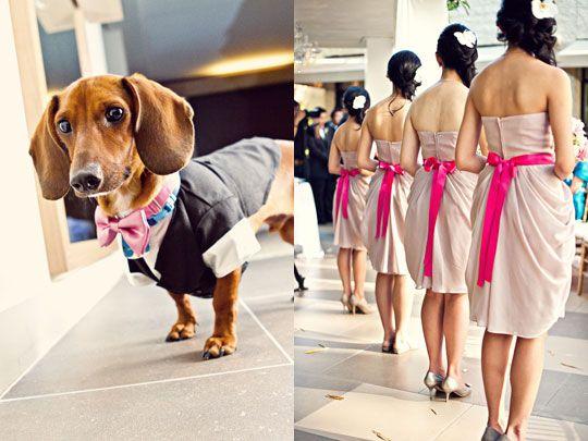 Melvin Gilbert Photography via CeremonyBlog.com (2)