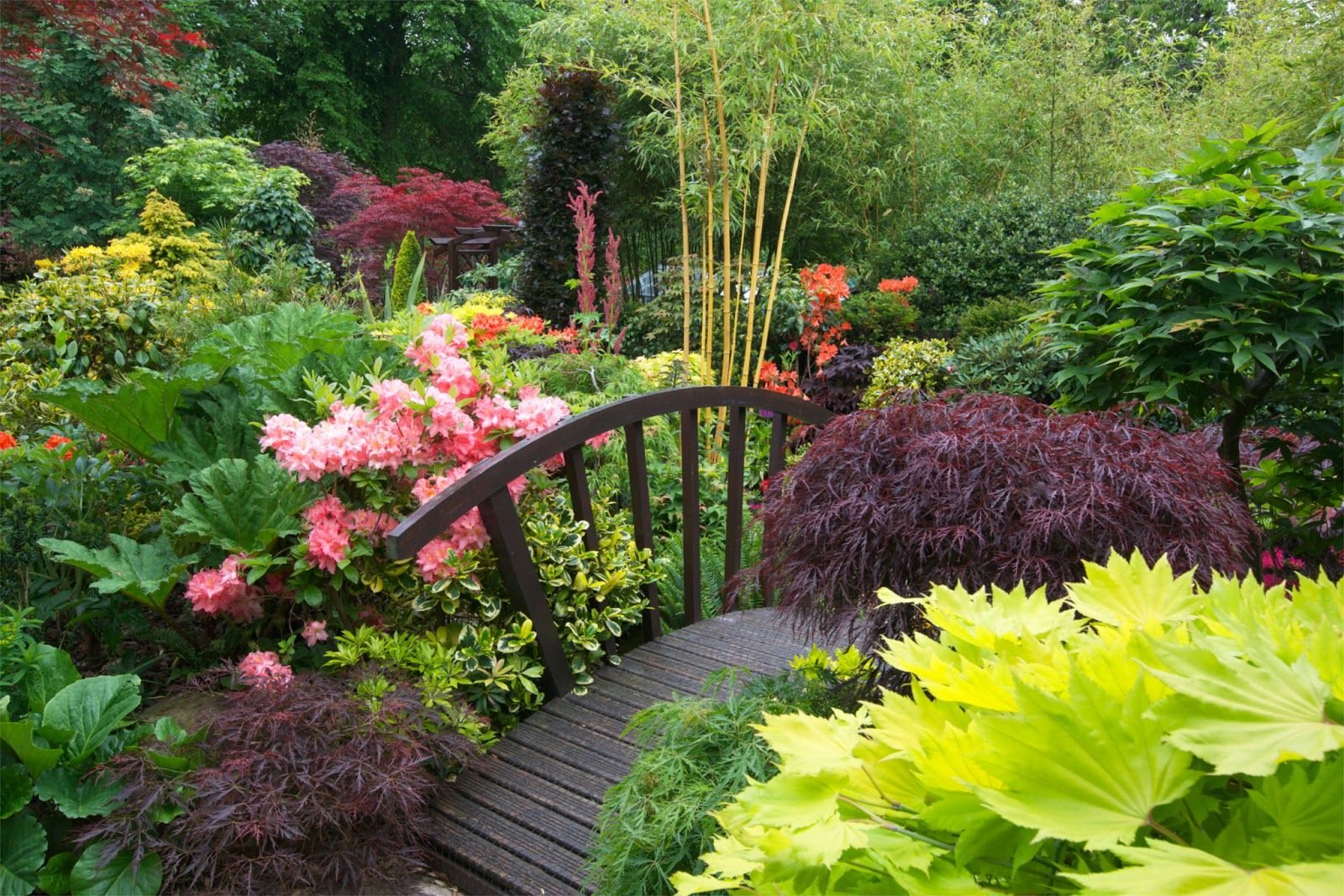 Four Seasons Garden The Most Beautiful Home Gardens In World