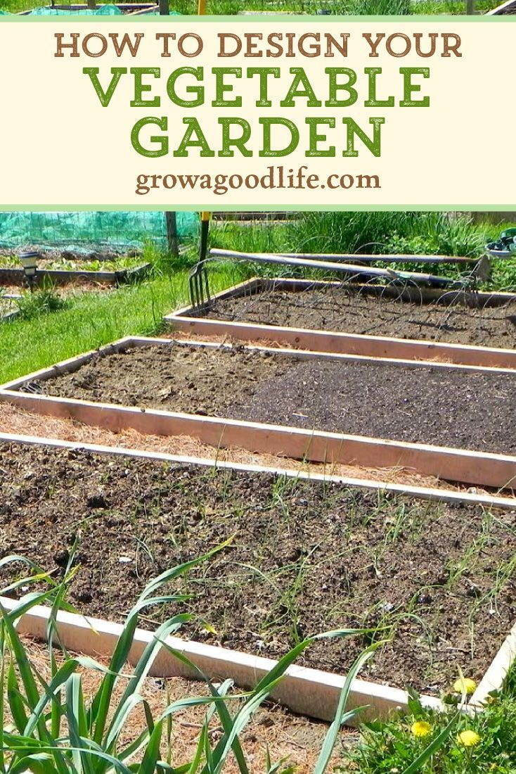 Planning Your Vegetable Garden Mapping the Garden Beds is part of Spring vegetable garden, Vegetable garden design, Organic vegetable garden, Vegetable garden, Veggie garden, Garden types - Before sowing a single seed, it is helpful to sketch a map of your vegetable garden so you know how many seedlings you need where they will be planted