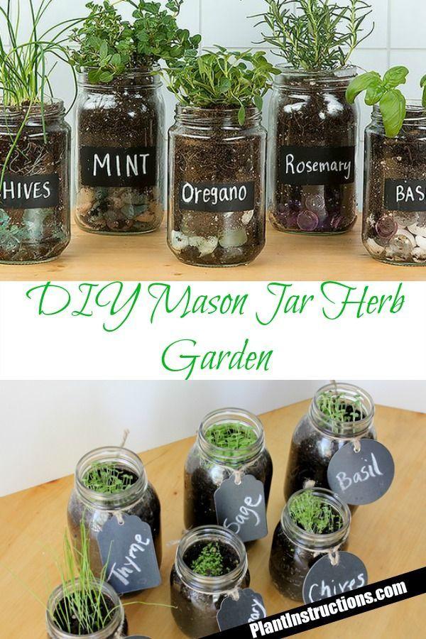 DIY Einmachglas Kräutergarten #masonjardecorating