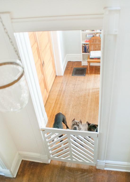 Doggie Gate DIY + Ace KickOff Diy dog gate, Indoor dog