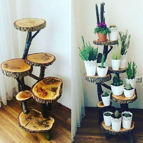 Danni Ruvina on Instagram: Inspiração para colocar as suculentas! Eu achei lindo!!!   Made by  @binnar07 #suculenta#suculentas #suculentalovers #plantinhas