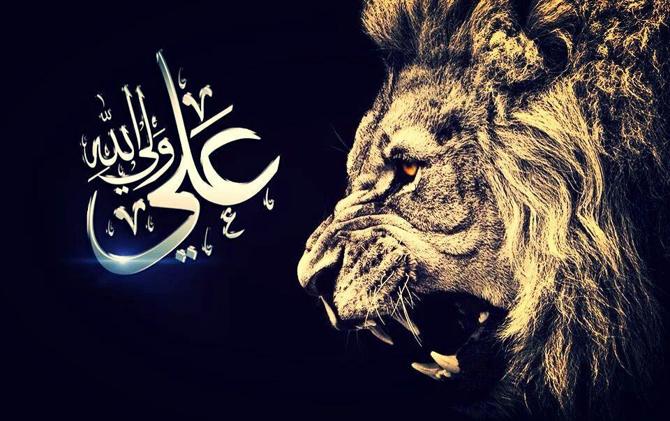 The lion of Allah #shia #Twelver #AhleBayt #ImamAli
