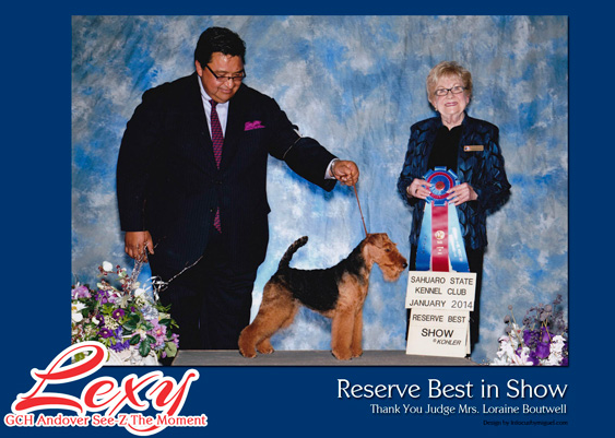 Montgomery Country Kennel Club - Terrier Show