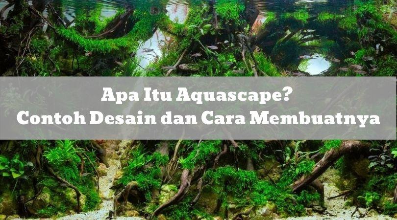 60 Aquascape Indonesia Ideas Aquascape Aquarium Aquascape Aquarium