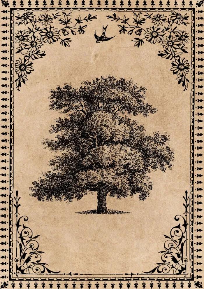 Free Printable Vintage Trees Art Prints Old Paper Background Vintage Tree