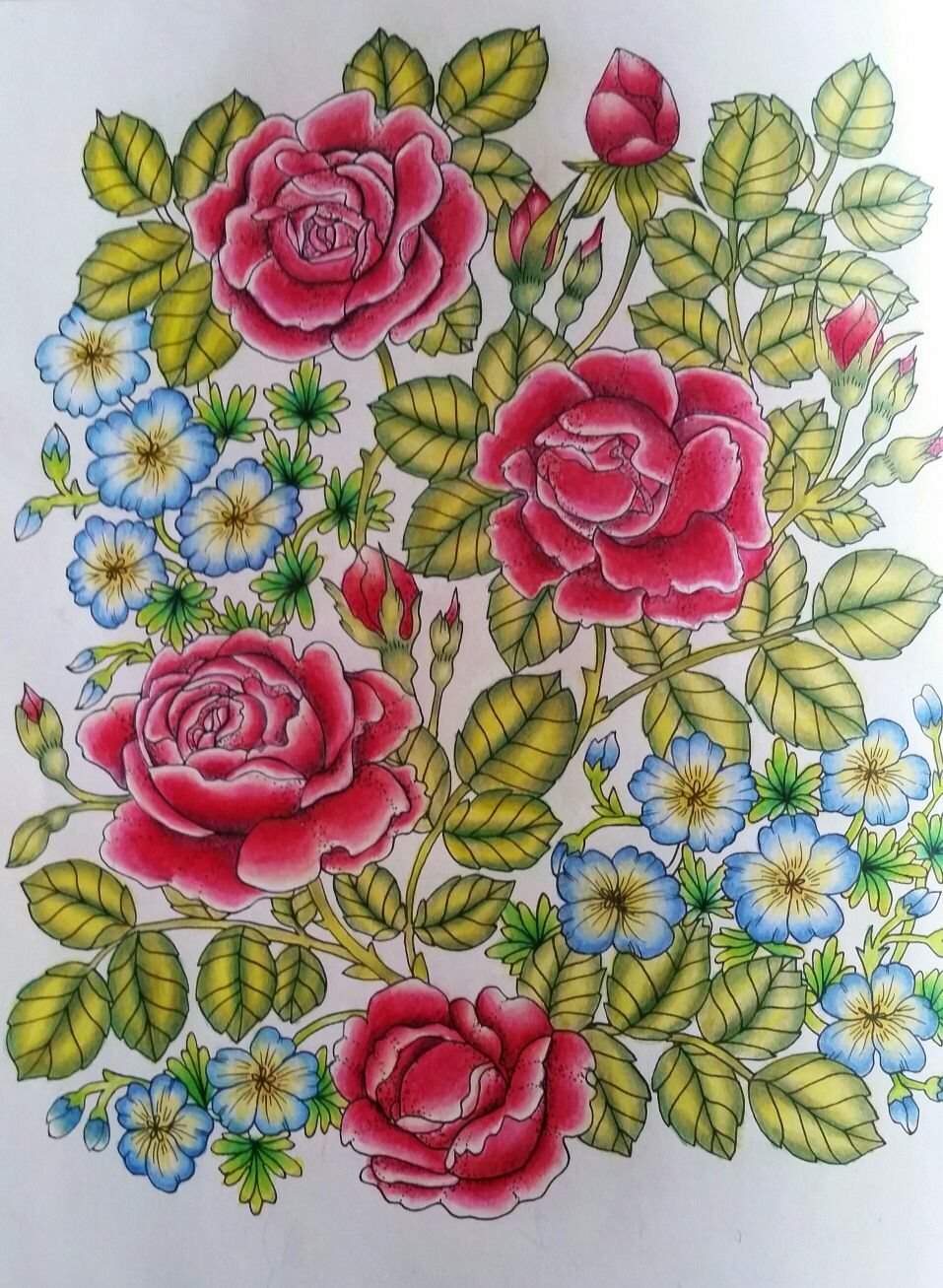 Blomster Mandala, colored by Karin Persson | Twilight Garden ...