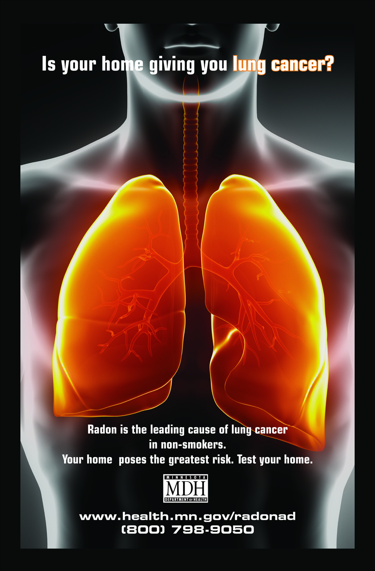 Radon lungs