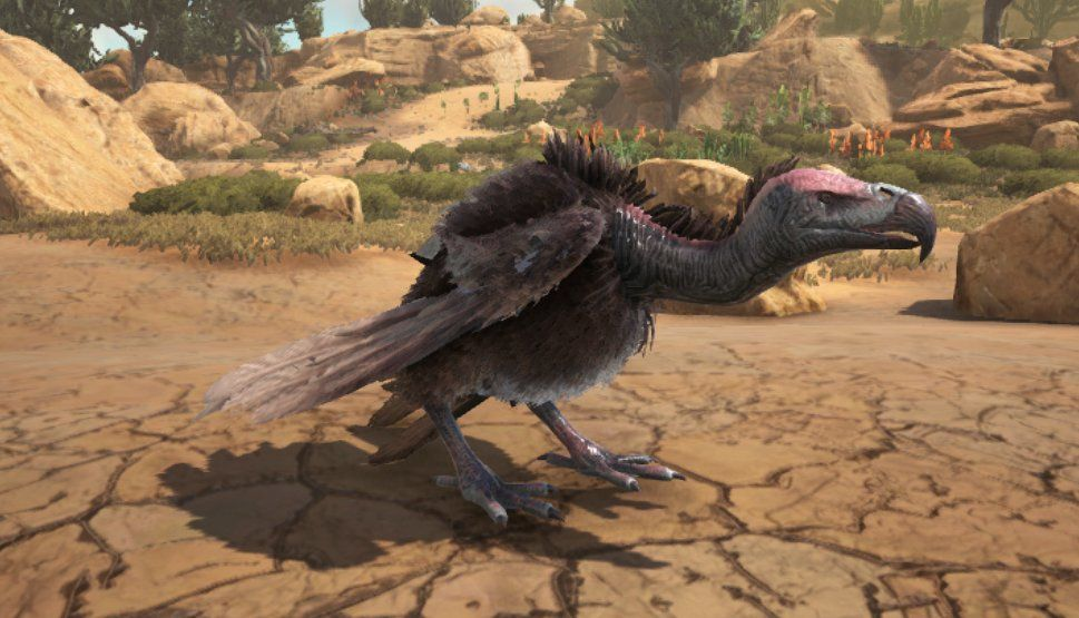 Ark scorched earth vulture taming calculator ark survival vulture taming calculator for ark survival evolved including taming times food requirements kibble recipes saddle ingredients forumfinder Gallery