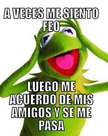 59 Mejores Imagenes De Rana Rene Rana Rene Memes De La Rana