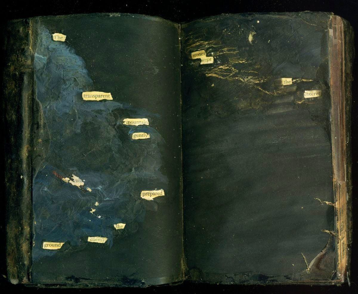 poetry from blackened out book pages - it's like the reverse of fridge magnet poetry.