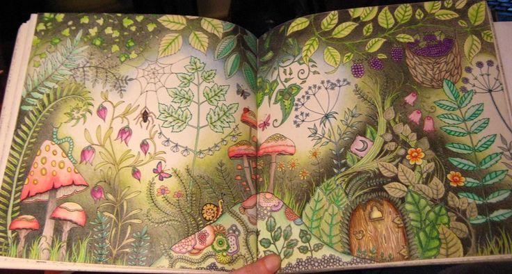 Enchanted Forest Coloring Book By Johanna Basford In 2019