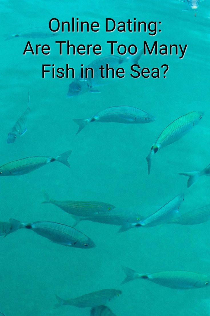 Fishes In The Sea Dating Site - Plenty of Fish