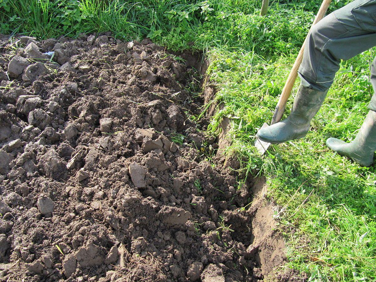 Garten Umgraben Warum Wann Wie Womit Tipps Garten Umgraben Garten Garten Pflanzen