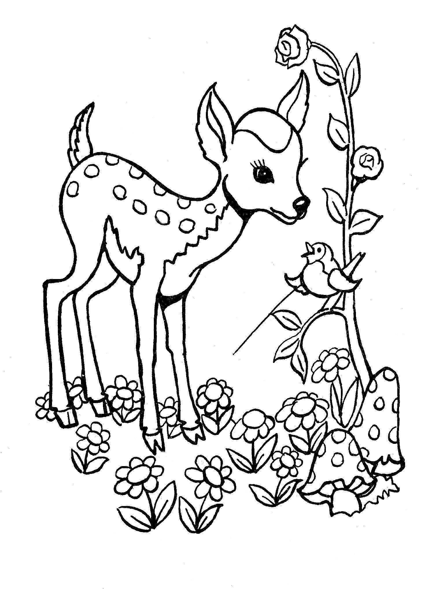 Fise De Colorat Animale Sălbatice Deer Coloring Pages Animal Coloring Pages Horse Coloring Pages