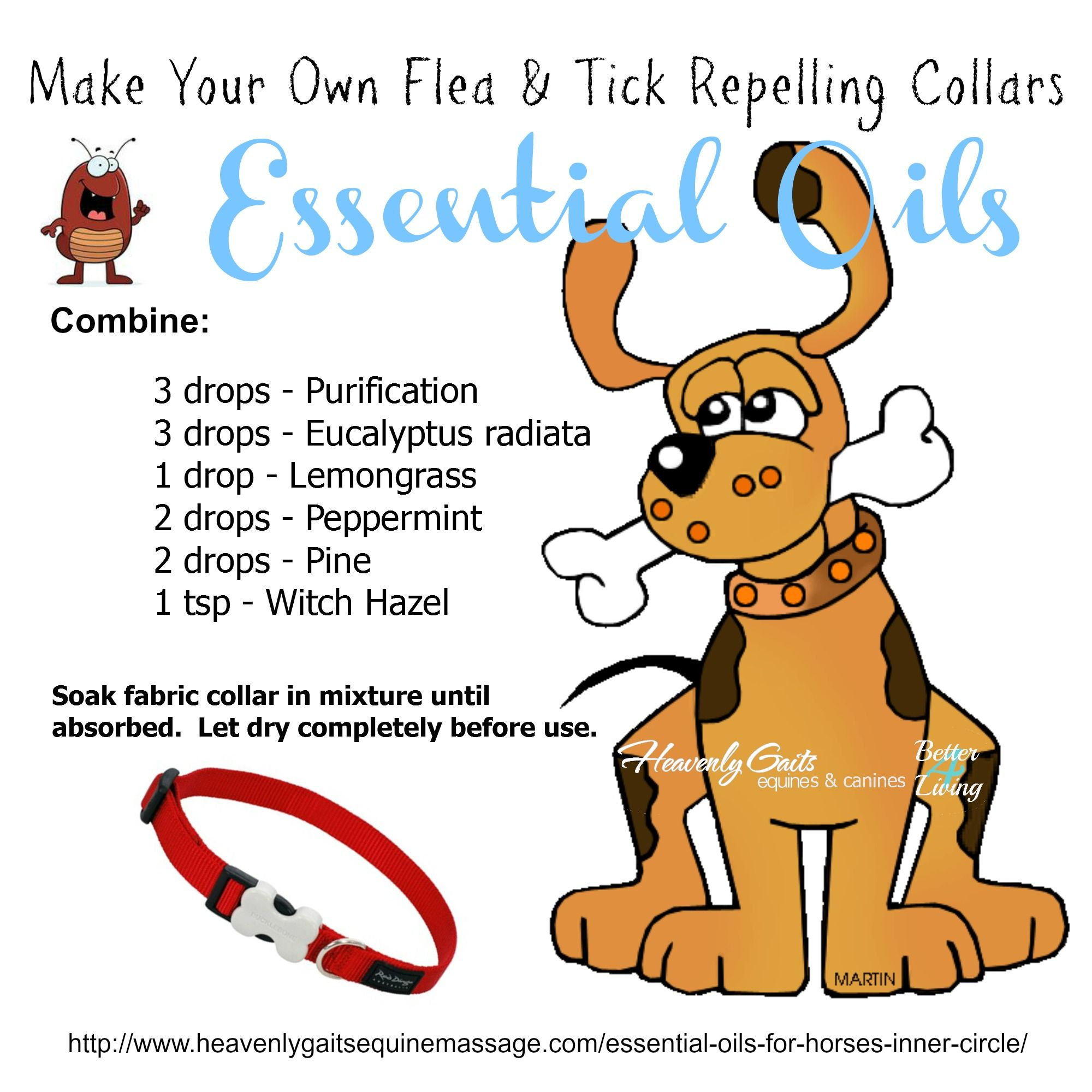 Make Your Own Flea Tick Repelling Collars Using Pure Essential Oils Essential Oils For Fleas Essential Oils Dogs Living Essentials Oils