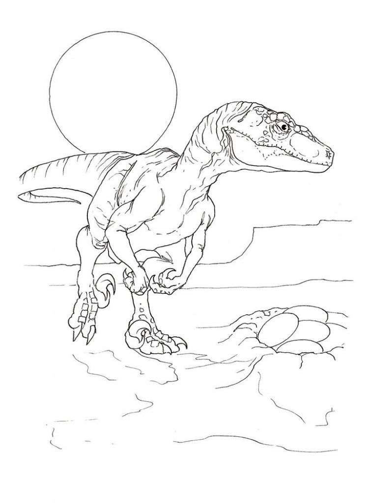 Velociraptor Coloring Pages | Animal Coloring Pages | Pinterest ...