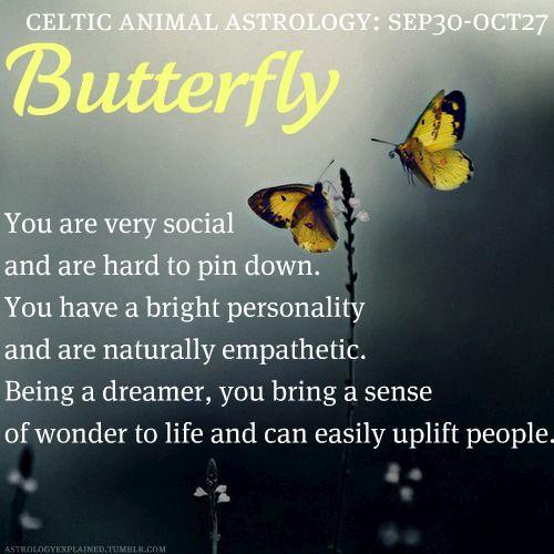 libra horoscope born october 27