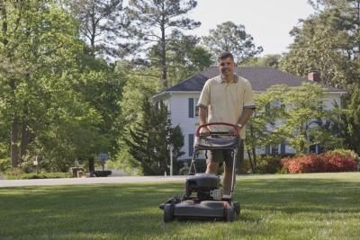 Grass That Does Not Require Mowing Lawn Mower Overseeding Winter Lawn